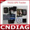 Triband ou Quadband Tk102 GPS Tracker avec Web Tracking Platform