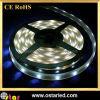 가동 가능한 수중 LED 지구 IP68
