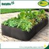 Засаживать дома Onlylife садовничая зеленый Vegetable растет мешки осеменяя мешок