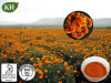 Extrato natural do Marigold de 100% de Kingherbs: Lutein 5%, 10%, 20%, 80%, 90% (UV, HPLC); Zeaxanthin 2%~50%.
