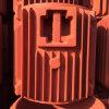 Pieza de la caja del motor del arrabio