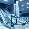 Preiswerter Flughafen-Wohnelektrische Jobstepp-Höhenruder-Innenrolltreppe
