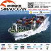 Remetente de frete chinês que envia os bens ao agente de frete mundial FCL LCL