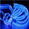 높은 Brightness IP65 SMD5050 60LEDs 110V/220V 다중 Color LED Flexible Strip Light