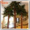 A palma artificial do outono da fibra de vidro da decoração do mercado planta a árvore