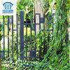 Rust-Proof/anti-séptico/cerca de aço segurança da alta qualidade para o jardim