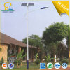 9m 80W Solar Street DEL Lamp avec Good Price