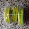 El envolver amarillo/verde del encogimiento del calor