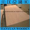 Bintangor Faced Furniture Plywood 8mm