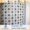 Plastik-pp.-Polypropylen dreiachsiges Geogrids