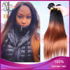 Migliore Eurasian Virgin Hair Weft di Two Tone Color 1b#/33# Straight