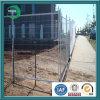 Австралийское Temporary Fence для строительных площадок (xy-116)
