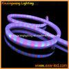LEIDEN Neonlicht 12V/24V/110V/127V/220V