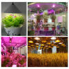Weihnachten Light Full Spectrum Fluorescent LED Indoor Plants Professional Growing Lighting und Outdoor Garten Lights 100W Light Bulb