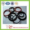 Anéis-O de As568 NBR feitos em China
