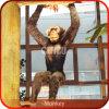 Animatronic Monkey 3D Models von Animals