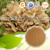 Polysaccharides 10%-50%를 가진 자연적인 Maitake Extract