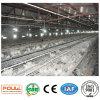 Matériel de ferme avicole de batterie de poussin de poulet de viande de système automatique de cage de Poullet