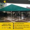 шатер пяди ясности ширины 10m с зеленой крышкой крыши и щипца (hy007b)