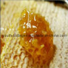 Honig, Spitzenhonig, 100% natürlicher Honig, keine Antibiotika, keine Schwermetalle, kein pathogenes Bakterium, Biokost