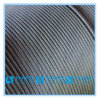6X36 Galvanized or Ungalvanized Steel Wire Rope