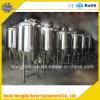 Equipo grande de la fermentación de la cerveza/equipo de llavero de la cervecería del proyecto