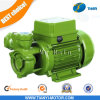 Kf1 Electric Pump 0.5HP Water 정원 Pump AC Clean Water Pump