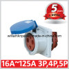 IP44 63A 2p+E 230V Single Phase Panel Mounted Socket
