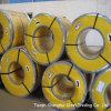 Aço galvanizado com bobinas Prepainted (Tdx51d)