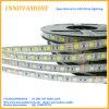 Streifen-Licht 5050 300LED Gleichstrom-24V LED flexibles helles Band-Lux-Farbband 5m beleuchtend des Streifen-LED