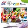 2017 Uni/OEM heißes Salling mit konkurrenzfähiger Preis 42 '' E-LED Fernsehapparat