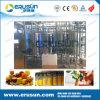 Chaîne de production automatique de jus machine de CIP