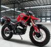X十字の二重品質Tank250ccのオートバイ