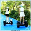 Motorino dell'equilibrio di auto delle 2 rotelle, vagone per il trasporto dei lingotti elettrico, motorino elettrico