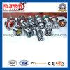 Toyota를 위한 4RS Dac39680637/8dac39680737 Wheel Hub Bearing Auto Bearing