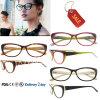 Frames dos vidros do olho de gato do frame ótico dos Eyeglasses da forma dos Eyeglasses do acetato