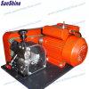 Decklack-Draht-Abisoliermaschine (SS-SM04) (RADIERGUMMI-Abstreifer ersetzen)
