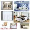 Самомоднейшая домашняя мебель Pr-F01