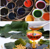 Le soja Lecithin Special pour Paint/Oil-Printing/Coating/Color Paste Dispersant Agents