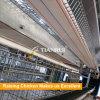 Las aves de corral contienen la jaula de la ponedora del edificio agrícola de pollo de la estructura de acero