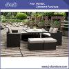 Mobilia esterna del giardino del rattan di vimini del patio (J382-A)