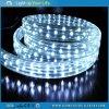 Luz de la cuerda plana ligera Sunrain LED LED azul