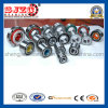 Dac254650024/17#Dac25720043-2RS Car Automotive Auto Wheel Hub Bearing