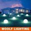 草原の芝生の装飾多彩なLEDの球の照明
