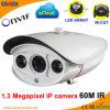비바람에 견디는 LED 배열 IR 1.3 Megapxiel IP 웹 캠