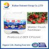 海藻Microbial Organicの潅漑Fertilizer Added Inorganic Fertilizer