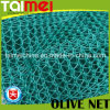 Triangle Olive Collect Net para Tunísia / Grécia