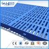 600X600mm de Plastic Vloer van de Varkensfokkerij