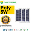 Los paneles solares Shaped 5W 5V de la aduana decorativa DIY