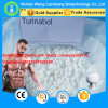 4-Chlorodehydromethyltestosterone rohes Steroid Puder CAS 2446-23-3 orales Turinabol